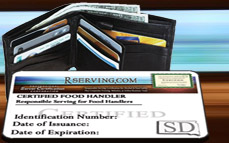Replacement Wallet Card